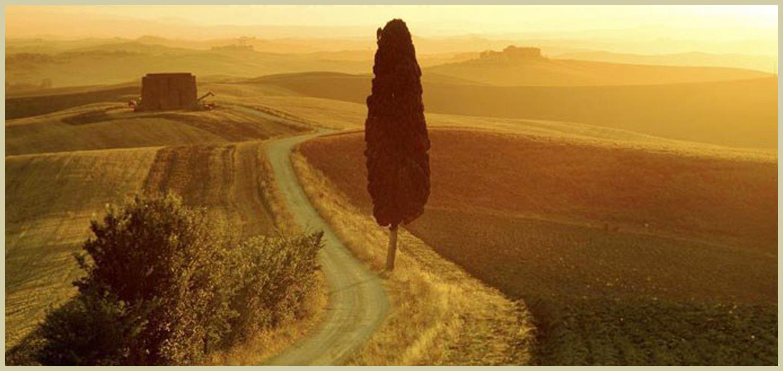 Slide Show per Tiziano Siggillino 005